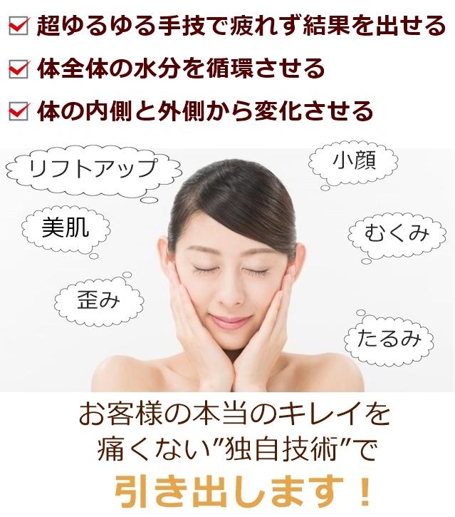 シュプリーム フェイシャル(スッキリ美顔整顔)の特徴
